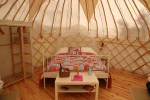 Periwinkle - Woodland Yurt